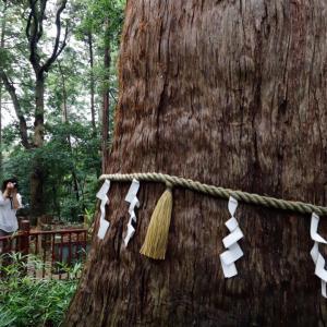 麻賀多神社へ
