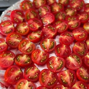 セミドライトマトを作ってみた
