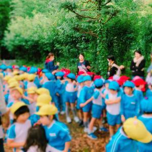 幼稚園行事(秋の収穫、お芋掘り)