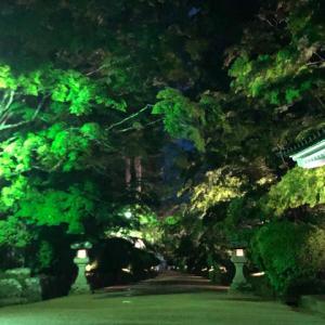 夜の壇上伽藍3(あの世への道~ガイドブックにない話)