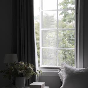 窓からみえる木を眺めて。