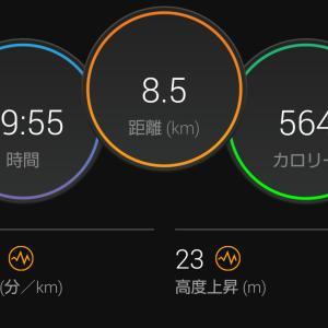 さっき見たマラソンを走った夢