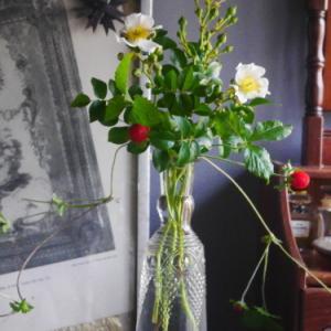 小さな花束で初夏を楽しむ   2020 〜永遠に好きな組み合わせ〜
