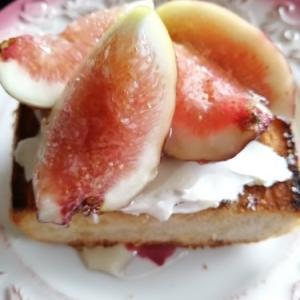 朝ごパン 〜いちじく と クリチー トースト〜