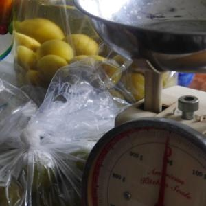 梅仕事 8 冷凍梅で梅酒