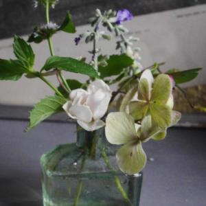 小さな花束で真夏をを楽しむ 〜花の無い時〜