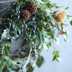 11月26日 庭の蔓で作るクリスマスリースWS
