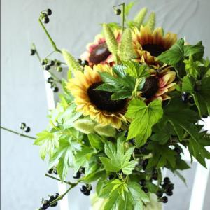 向日葵と黒。