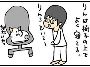 クローゼットは猫ベッドだらけ。