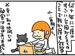 猫さんと台風対策。