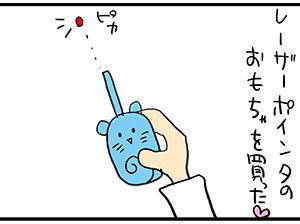 レーザーポインタのおもちゃ。