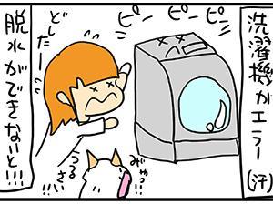 猫毛が詰まって排水できません。