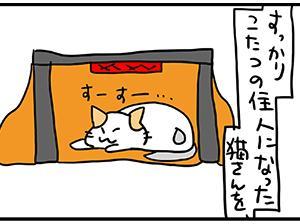 猫さんの炬燵。
