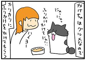 優しいお兄さん猫ちゃん。