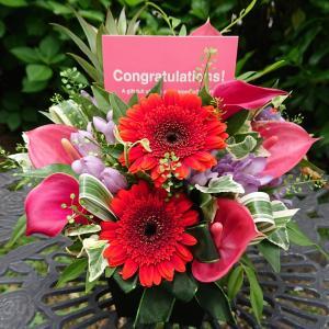 お祝いに贈る赤い花
