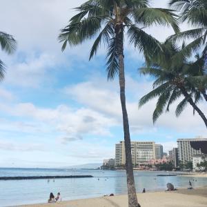ハワイにも影響する今回の台風&ワイキキのコンビニ、ABCストアの店舗数がすごい&オススメアイス