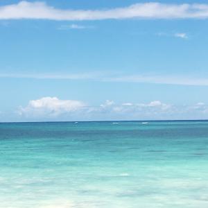 急展開、ハワイのビジネス再開の動き&画面を見続けて目が痛い時は、この青と緑を見ると…どうかな?