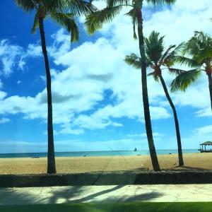 クイズ、ここはどこ?&公園の閉鎖とビーチに留まることが禁止されたところ…&ドライブのみのドライブ