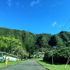 コストコの楽しみ方♪&休日を朝から思いきり楽しむために…&ハワイの観光が急速に復活