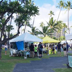 停電です…&6月!さて現在ハワイで盛況となっている業界は&「褒められて、怒られて、褒められる」