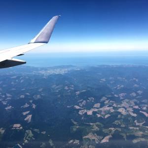 旅先でのホールフーズの便利な使い方&空港にズラリと並ぶ…