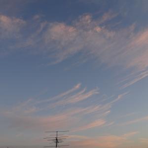 朝空(11/7)