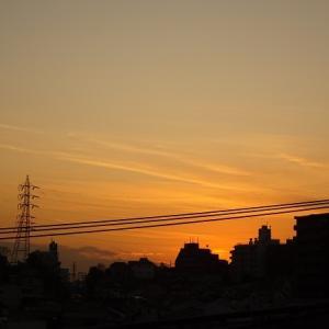 夕散歩(12/16)