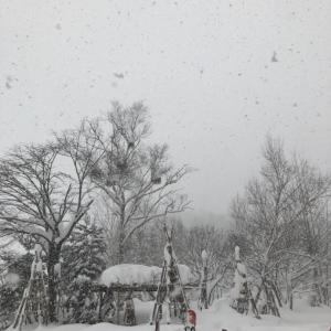 冬スポ戦利品と、スノボ家族旅行について