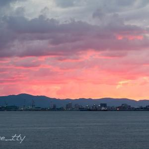 函館港と朝焼け