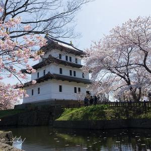 サクラ咲く松前城