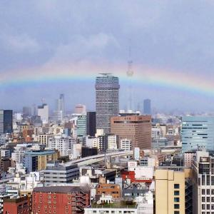 虹も祝福する「即位礼正殿の儀」
