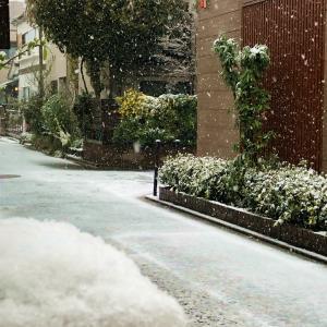 恵みの雪は宇宙の粋な采配♪