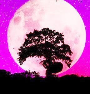 変容を促す女神アバンダンティアの満月一斉遠隔ヒーリング~いて座のストロベリームーン