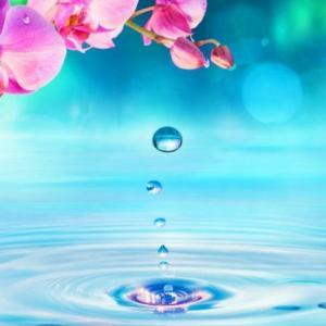 魂の潤いは瞑想です