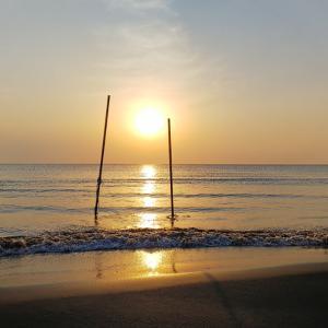 太陽になるか、地球になるか
