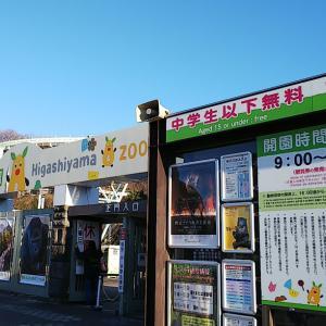 【東山動植物園】人生初コアラ!?