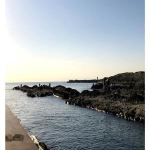 2019GW  三浦半島〜城ヶ崎