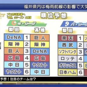梨田昌孝氏と高橋尚成氏のセ・パ順位予想 DeNAは1位と3位!