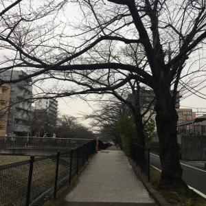 小田急線全制覇…一歩及ばず