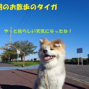 台風怖いよ~><