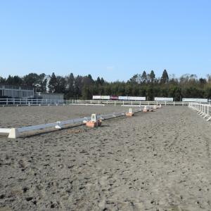 目指せ合格☆乗馬ライセンスで高校単位を取得する馬の学校!