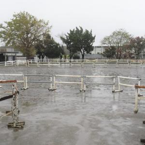 雨の日の「なかなかレアな施設管理」に注目!in東関東馬事