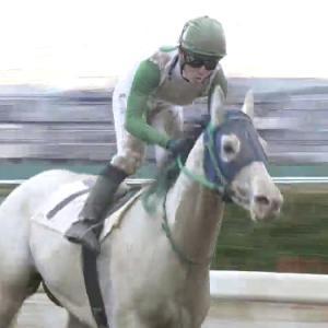 バジガク競走馬が浦和で1着!&雨が続く東関東馬事では・・・