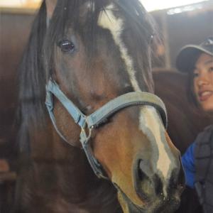 馬の学校では、一足先に出会いと別れの春が来ました!