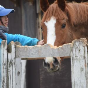 馬の性格や癖を知り尽くしている高校生がいる学校!