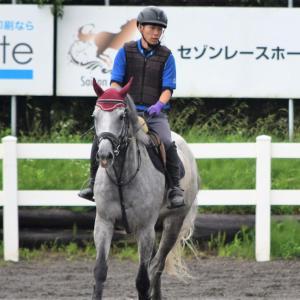 馬の学校の施設で行われる『競技会』。それぞれの目標とは