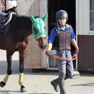 朝の学校は馬ラッシュ!?今日も馬と共に学ぶ1日!!in馬事学院(バジガク)