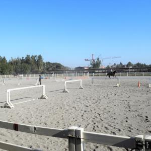 ジュニアレッスン&学校見学が開催!!馬と過ごす日曜日♪