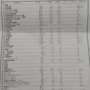悪性リンパ腫診察日【微妙なしこりと血液検査結果…】