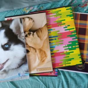 やっと、やっとノートが買えた!